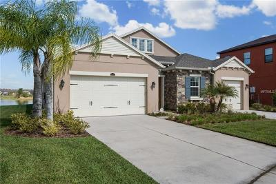 Wesley Chapel Single Family Home For Sale: 28753 Tavira Court