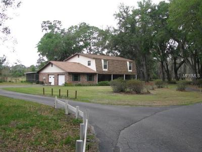 Plant City Single Family Home For Sale: 1002 Crocker Lane