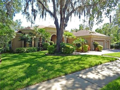 Lithia Single Family Home For Sale: 16116 Ternglade Drive