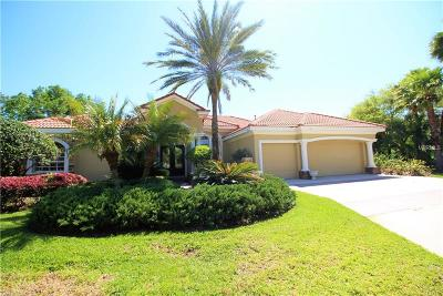 Tampa Single Family Home For Sale: 17201 Lakay Place