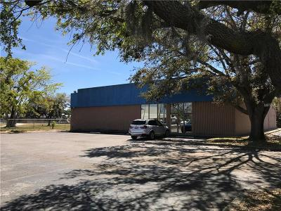 Auburndale Commercial For Sale: 2590 Havendale Boulevard