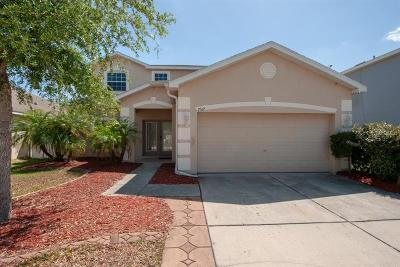 Gibsonton Single Family Home For Sale: 7517 Dragon Fly Loop