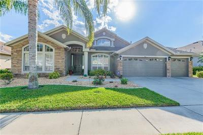Wesley Chapel Single Family Home For Sale: 1641 Beaconsfield Drive