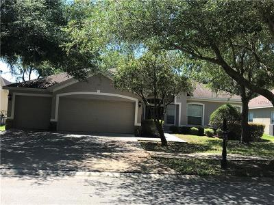 Hernando County, Hillsborough County, Pasco County, Pinellas County Single Family Home For Sale: 2503 Centennial Falcon Drive