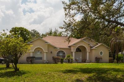 Weeki Wachee Single Family Home For Sale: 4490 Rachel Boulevard