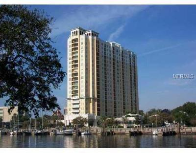 Tampa Rental For Rent: 345 Bayshore Boulevard #1207