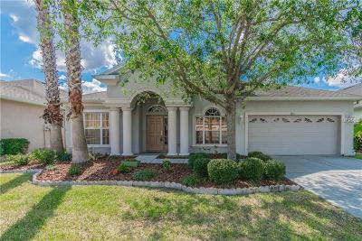 Wesley Chapel Single Family Home For Sale: 3621 Fiddlers Green Loop