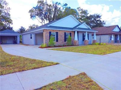 Plant City Single Family Home For Sale: 1204 Wild Daisy Drive
