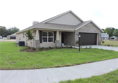 Plant City Single Family Home For Sale: 1222 Wild Daisy Drive