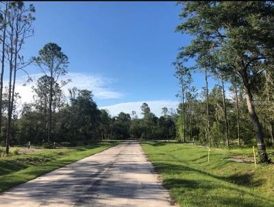 Lutz Residential Lots & Land For Sale: Debuel Road