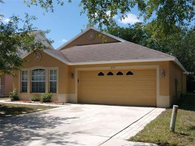 Riverview Single Family Home For Sale: 6519 Summer Cove Drive