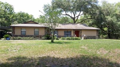 Thonotosassa Single Family Home For Sale: 15404 Morris Bridge Road