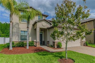 New Port Richey, New Port Richie Single Family Home For Sale: 11713 Crestridge Loop