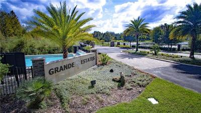Lutz Residential Lots & Land For Sale: 17602 Grande Estates Place