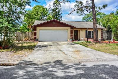 Tampa Single Family Home For Sale: 14928 Philmore Road