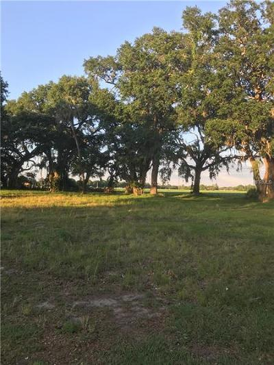 Plant City Residential Lots & Land For Sale: 2211 E Sparkman Road