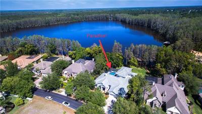 Land O Lakes Single Family Home For Sale: 21001 Lake Vienna Drive