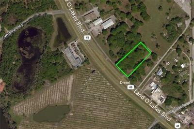 Residential Lots & Land For Sale: 6712 Land O Lakes Boulevard