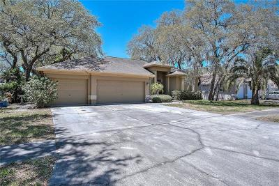 Tarpon Springs Single Family Home For Sale: 1021 Wideview Avenue
