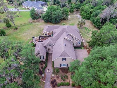 Lithia Single Family Home For Sale: 12709 Mannhurst Oak Lane