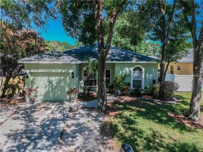 Tampa Single Family Home For Sale: 6921 N Gunlock Avenue