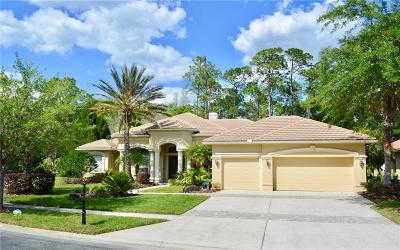 Tampa Single Family Home For Sale: 5004 Waterkey Way