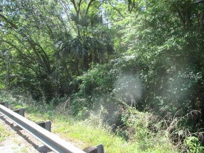 Valrico Residential Lots & Land For Sale: Lithia Pinecrest Road