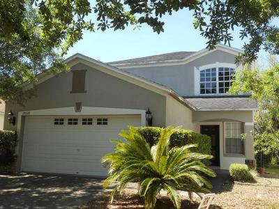 Tampa Rental For Rent: 18126 Birdwater Drive