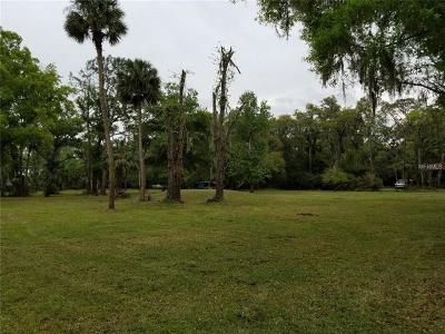 Valrico Residential Lots & Land For Sale: 4411 River Drive