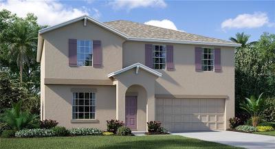 Wimauma, Wimauma` Single Family Home For Sale: 17130 White Mangrove Drive
