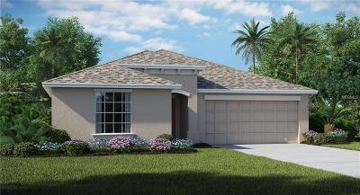 Wimauma, Wimauma` Single Family Home For Sale: 16633 Myrtle Sand Drive