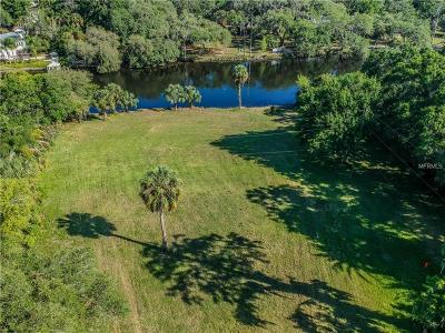 Hernando County, Hillsborough County, Pasco County, Pinellas County Residential Lots & Land For Sale: N Adah Avenue
