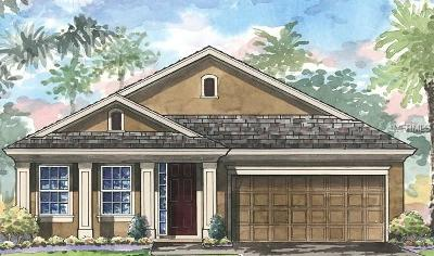 Apollo Beach Single Family Home For Sale