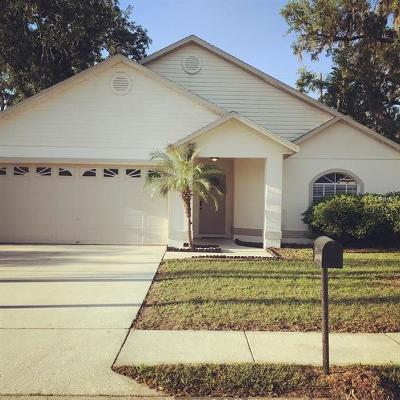 New Port Richey, New Port Richie Single Family Home For Sale: 12418 Bighorn Court