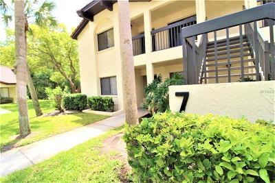 Palm Harbor Condo For Sale: 1801 E Lake Road #7A