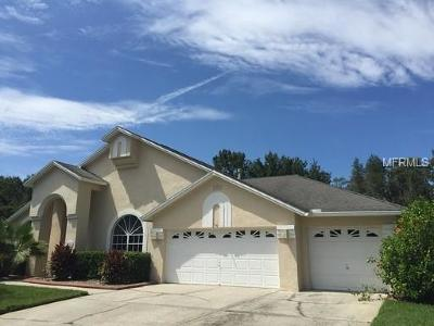 Tampa Rental For Rent: 18002 Kings Park Drive
