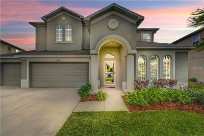 Wesley Chapel Single Family Home For Sale: 27922 Wild Sienna Loop