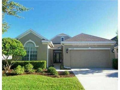Tampa Single Family Home For Sale: 10214 Evergreen Hill Drive
