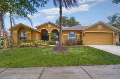 Valrico Single Family Home For Sale: 2404 Groveway Drive