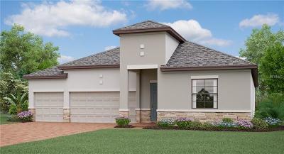 Ruskin Single Family Home For Sale: 9923 Sage Creek Drive