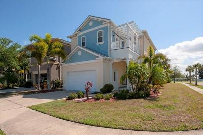 Apollo Beach Single Family Home For Sale: 6571 Simone Shores Circle