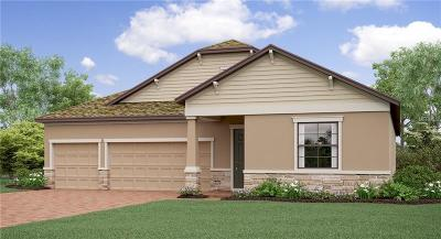 Ruskin Single Family Home For Sale: 9919 Sage Creek Drive