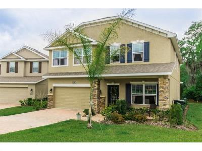 Lakeland FL Single Family Home For Sale: $329,421