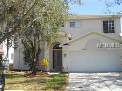 Tampa Single Family Home For Sale: 18129 Sandy Pointe Drive