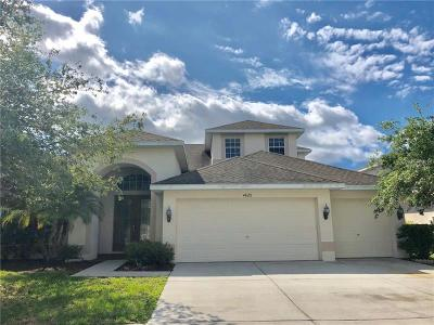 Wesley Chapel Single Family Home For Sale: 4828 Portmarnock Way