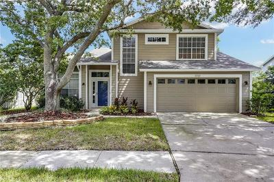 Tampa Single Family Home For Sale: 17737 Esprit Drive