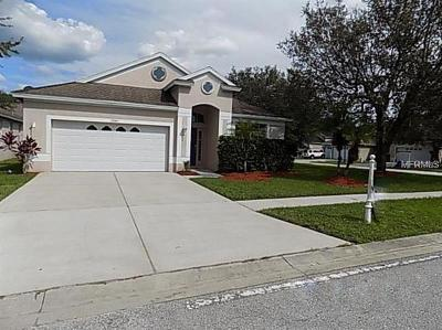 Single Family Home For Sale: 13001 Terrace Brook Place