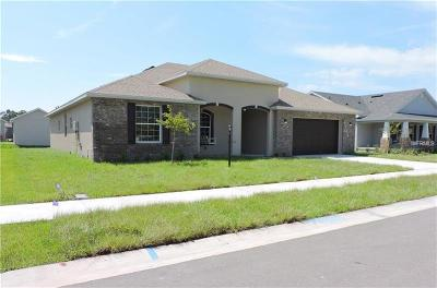 Plant City Single Family Home For Sale: 1236 Wild Daisy Drive
