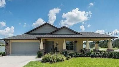 Plant City Single Family Home For Sale: 1238 Wild Daisy Drive
