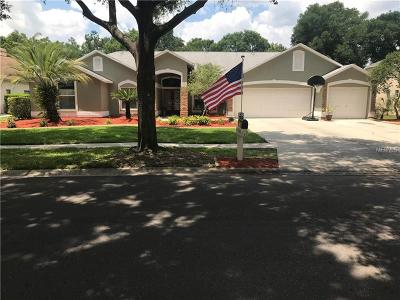 Hillsborough County Single Family Home For Sale: 3807 Turkey Oak Drive